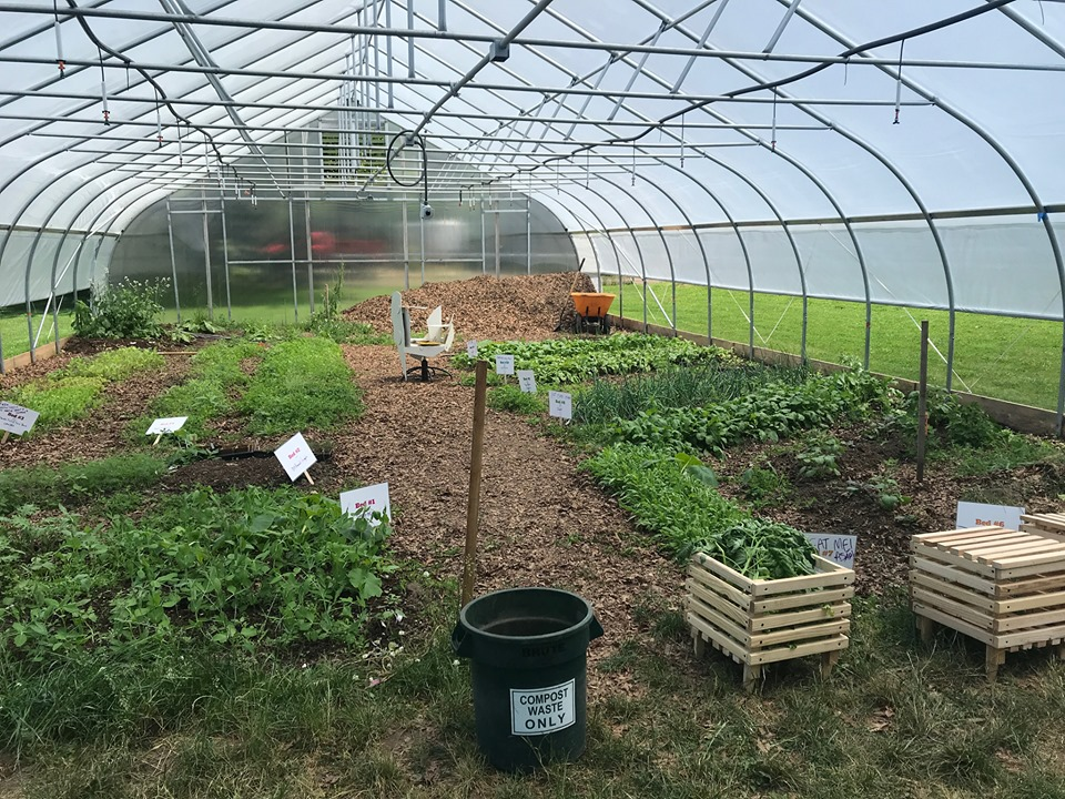 Hoop house interior