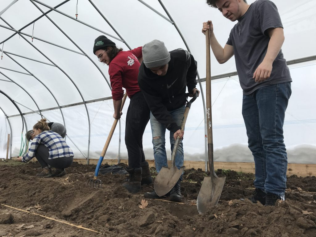 Students digging in the hoop house