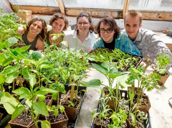 Students with plant starts in the Hoben garden greenhouse